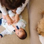 Hoe bereid je je huisdier voor op de komst van een baby?